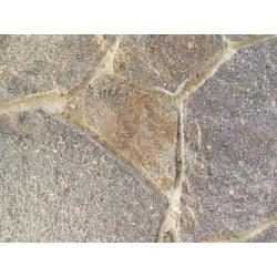Piedra Porfido